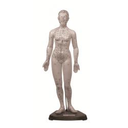 Cuerpo Humano femenino 48 cm. (puntos acupuntura) Tamaño 48 cm Material: goma-latex