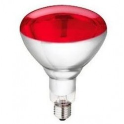 INFRARED BULB 250W